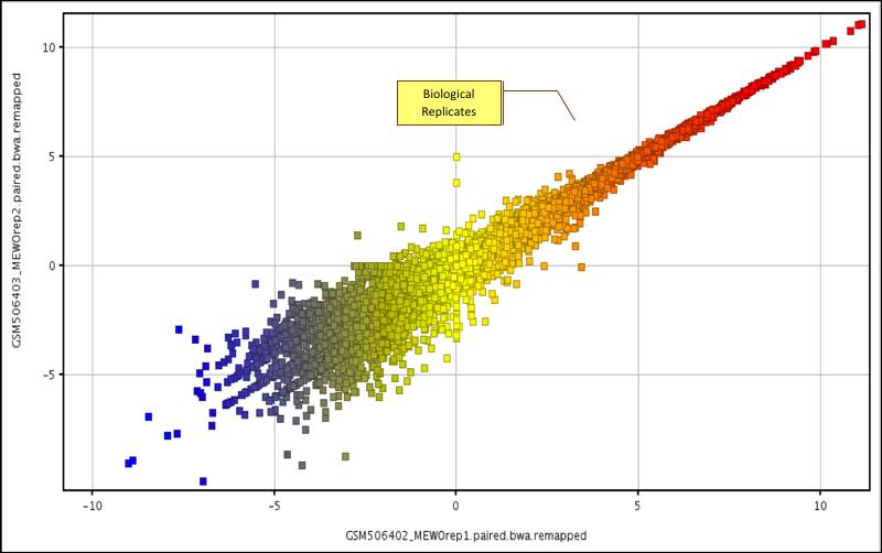 RNA-Seq| Strand NGS